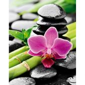 Kit de broderie Diamant - Collection d'Art - Orchidée et bambou