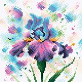 Kit de broderie Diamant - RTO - Iris violette