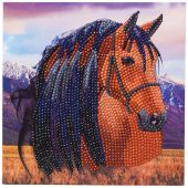 Carte broderie Diamant - Crystal Art D.I.Y - Cheval