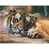 Kit de broderie avec perles - Charivna Mit - Le tigre attente