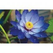 Broderie Crystal  - Charivna Mit - Lotus bleu