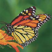 Kit de broderie Diamant - Diamond Art - Papillon Monarque