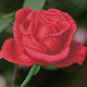 Kit de broderie Diamant - Diamond Dotz - Bouton de rose