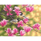 Kit de peinture par numéro - Dimensions - Mésanges et magnolias