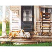Kit de peinture par numéro - Dimensions - Journée de chiens paresseux