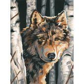 Kit de peinture par numéro - Dimensions - Loup parmi les bouleaux