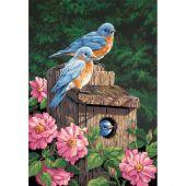 Kit de peinture par numéro - Dimensions - Merles bleus de jardin