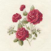 Kit point de croix avec tambour - DMC - Roses