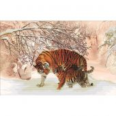 Kit point de croix - Nova Sloboda - Bébé tigre