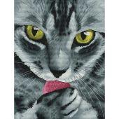 Kit point de croix - Nova Sloboda - Monsieur chat