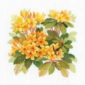 Kit point de croix - Riolis - Rhododendrons