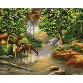 Kit de peinture par numéro - Wizardi - Matin dans la forêt