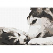 Kit point de croix - Marie Coeur - Husky et son chiot