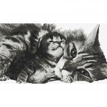 Kit point de croix - Marie Coeur - Chatte et son chaton