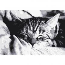 Kit point de croix - Marie Coeur - Sieste du chaton