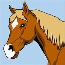 Kit de canevas pour enfant - SEG de Paris - Le cheval