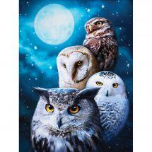 Kit de broderie Diamant - Diamond Painting - Oiseaux de nuit