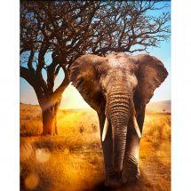 Kit de broderie Diamant - Diamond Painting - Elephant d'Afrique