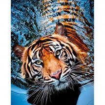 Kit de broderie Diamant - Collection d'Art - Tigre