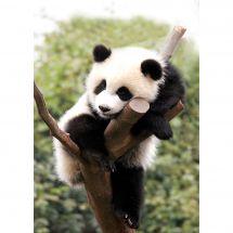 Kit de broderie Diamant - Collection d'Art - Panda fatigué