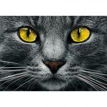 Kit de broderie Diamant - Collection d'Art - Les yeux jaunes
