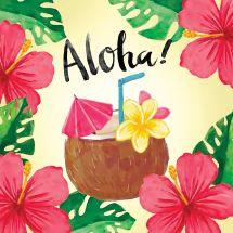 Kit de broderie Diamant - Collection d'Art - Aloha
