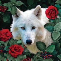 Kit de broderie Diamant - Collection d'Art - Loup blanc et roses
