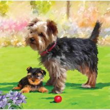 Carte broderie Diamant - Crystal Art D.I.Y - Chiens