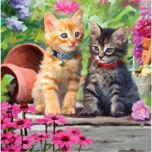 Carte broderie Diamant - Crystal Art D.I.Y - Amis chats
