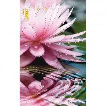 Broderie Crystal  - Charivna Mit - Lotus du matin