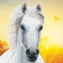 Kit de broderie Diamant - Diamond Art - Cheval blanc