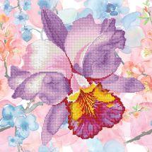 Kit de broderie Diamant - Diamond Dotz - Fleur de jardin mauve