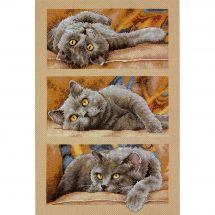 Kit point de croix - Dimensions - Max le chat