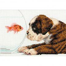 Kit point de croix - Dimensions - Bol pour chien