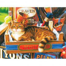 Kit de peinture par numéro - Dimensions - Pancartes de chat