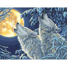 Kit de peinture par numéro - Dimensions - Loups au clair de lune