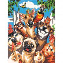 Kit de peinture par numéro - Dimensions - Selfie d'animaux de compagnie