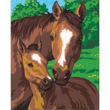 Kit de peinture par numéro - Dimensions - Poulain et sa mère