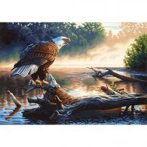 Kit de peinture par numéro - Dimensions - Aigle chasseur
