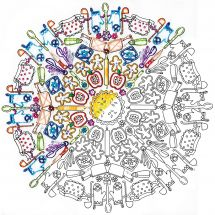 Toile pré-dessinée - Zenbroidery - Mandala cuisine