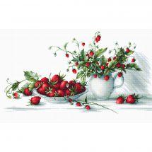 Kit point de croix - Luca-S - Nature morte, les fraises