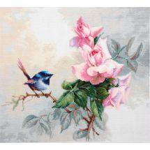 Kit point de croix - Luca-S - Petit oiseau