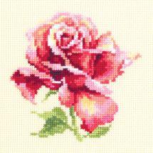 Kit point de croix - Magic Needle - Jolie rose