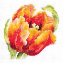 Kit point de croix - Magic Needle - Tulipe rouge