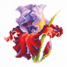 Kit point de croix - Magic Needle - Iris