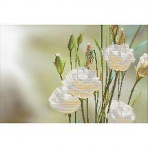Kit point de croix - Nova Sloboda - Roses blanches