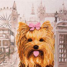 Kit point de croix - Nova Sloboda - Yorshire terrier
