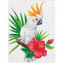Kit point de croix - Ladybird - Cacatoès
