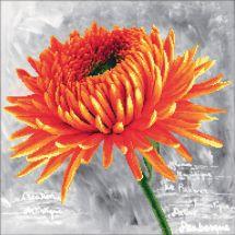 Kit point de croix - Needleart World - Dahlia orange