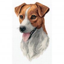 Kit point de croix - Panna - Jack russel terrier